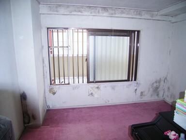 かびの生えた洋室