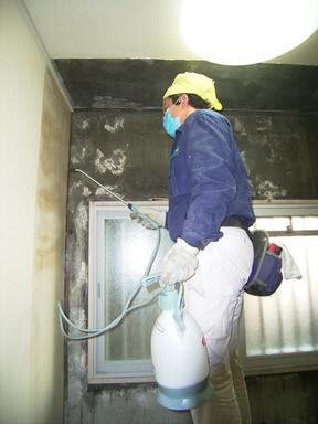 防カビ剤を窓周りの壁に塗布