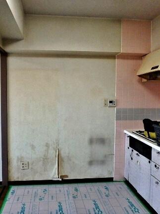 食器棚背面の壁のカビ